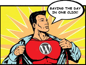 WordPress Super Hero