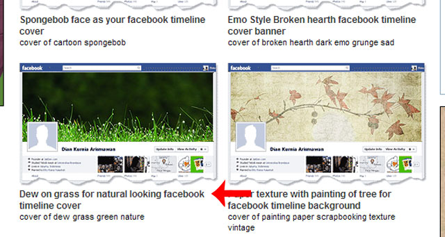 02 Timeline Cover Banner Facebook Pick Your Background