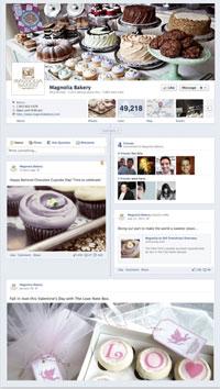 Facebook-Page-Timeline