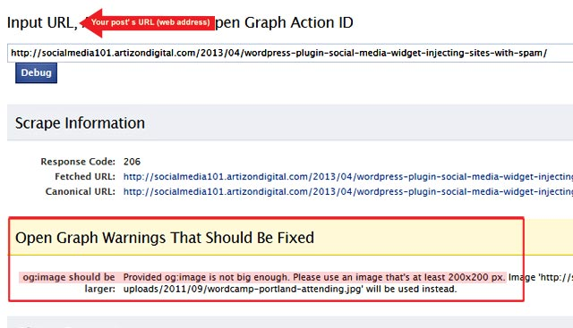 facebook-debugger-information